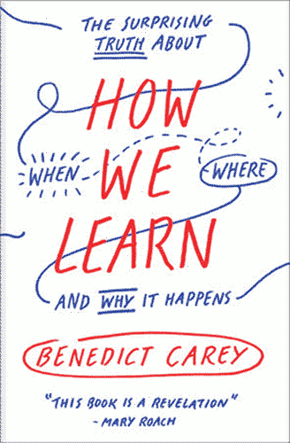 """How We Learn"" cover, a white paperback with blue scribbles on it with the title and author in red ink."
